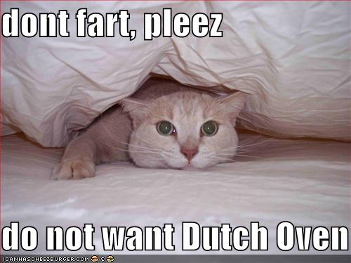 Dutch oven farts - 4 10