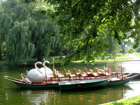 Boston Common Swan Boats