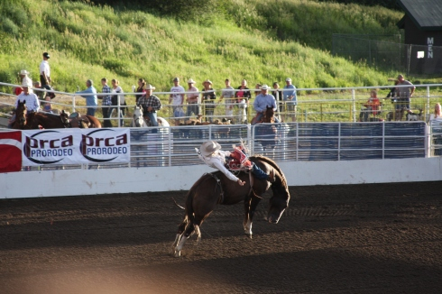 PRCA Rodeo in Steamboat Springs, Colorado; photo from SeaSweetie's Pages