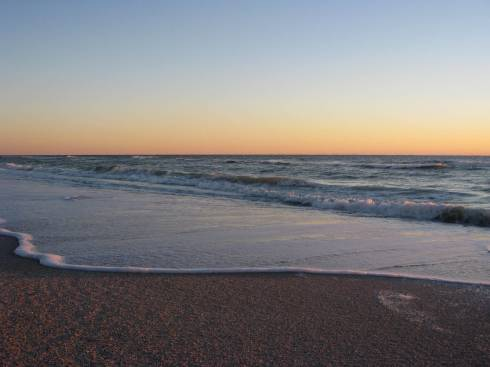 Sea Sweep